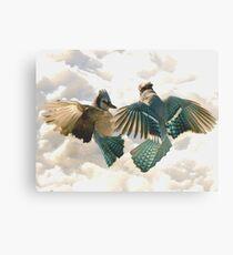 Blue Jay Battle  Canvas Print
