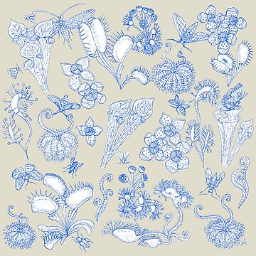 Carnivorous plants gray background / Fatal Desire by MissARobi