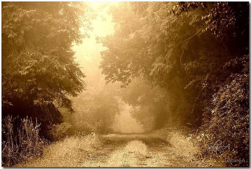 Path into the Unknown by SabineA