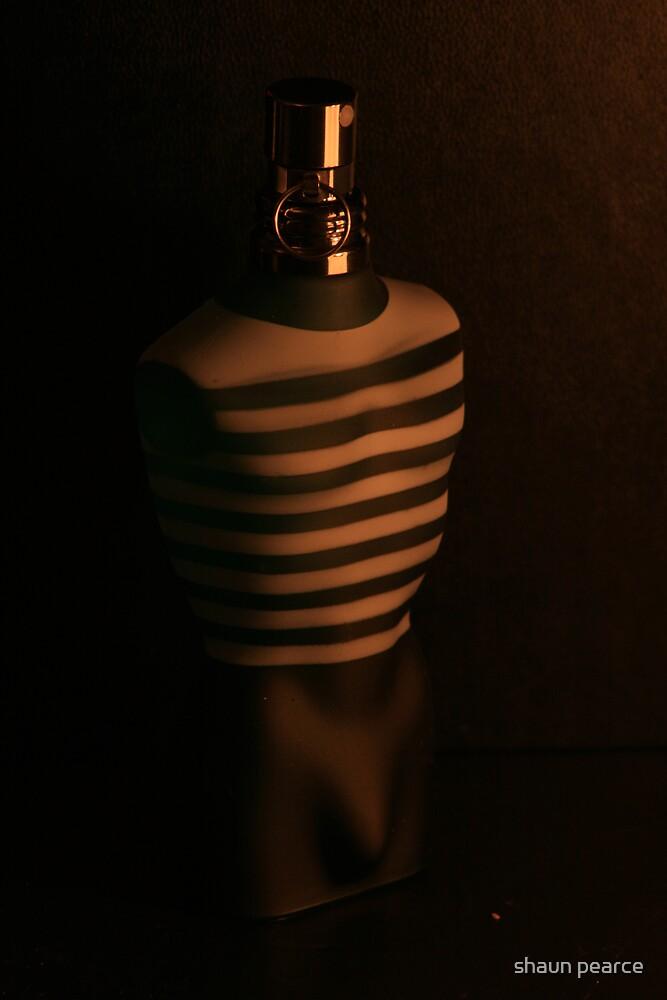 light & dark by shaun pearce