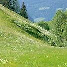 Spring in the Austrian Alps. 2005 . Dr.Andrzej Goszcz. No.1.. by © Andrzej Goszcz,M.D. Ph.D