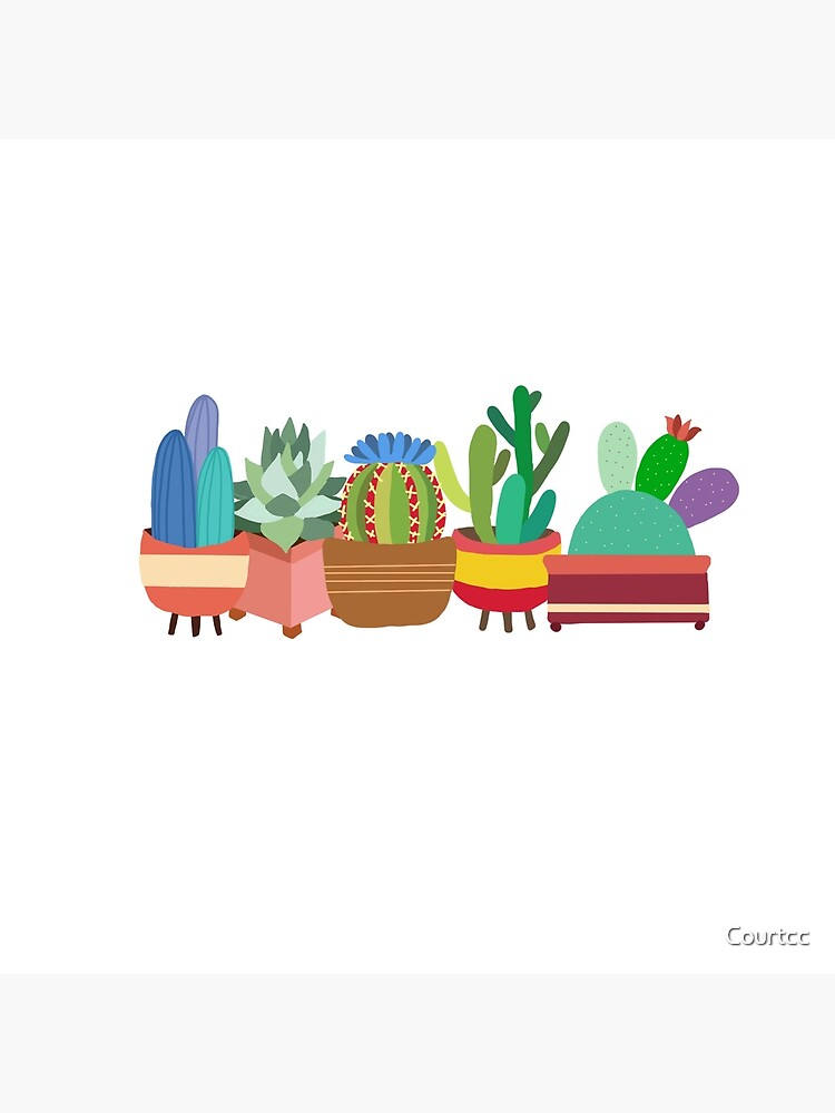 Colorful Cacti by Courtcc