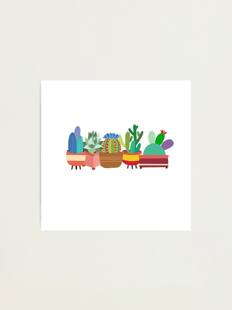 Alternate view of Colorful Cacti Photographic Print