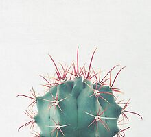 Ferocactus by Cassia Beck