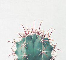 Ferocactus by Cassia Beck