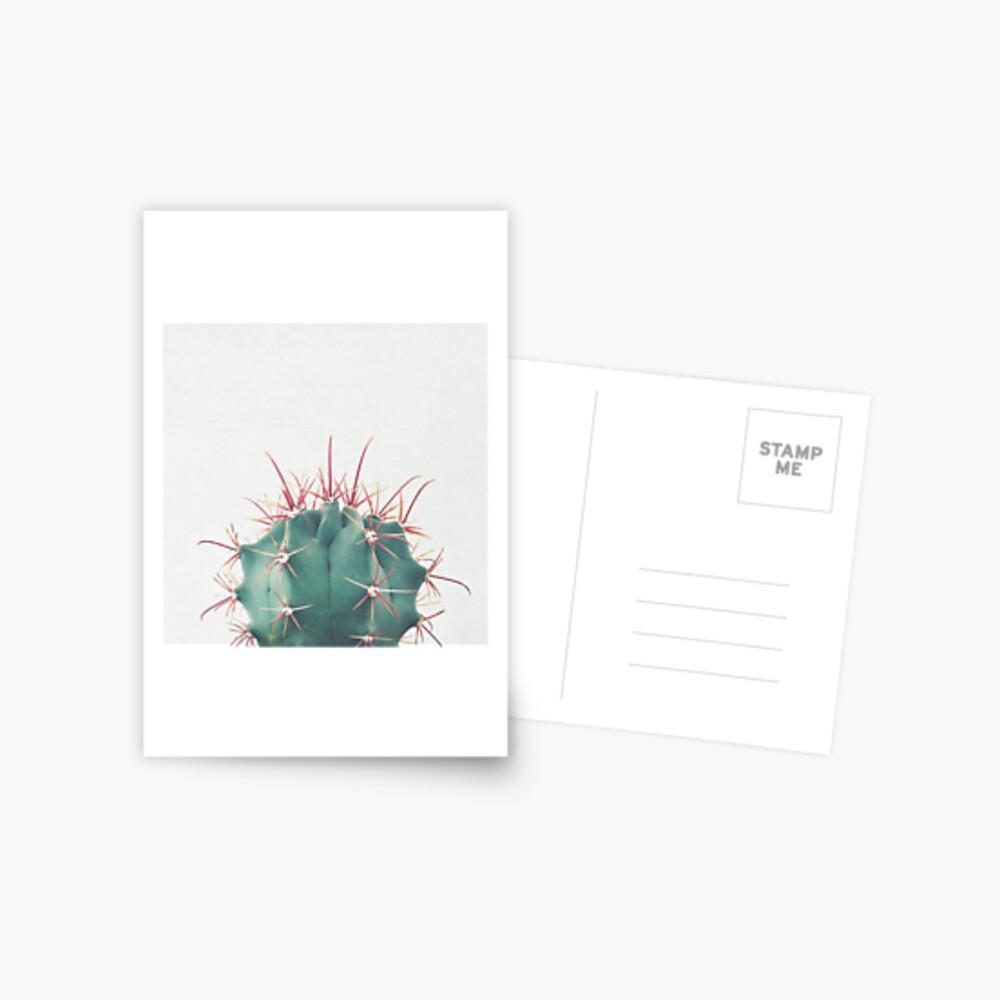 Ferocactus Postcard