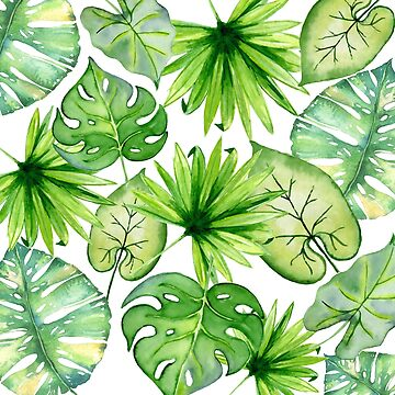 tropical leaves by SylviaCook