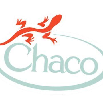 Chaco Lizard de pepperh24