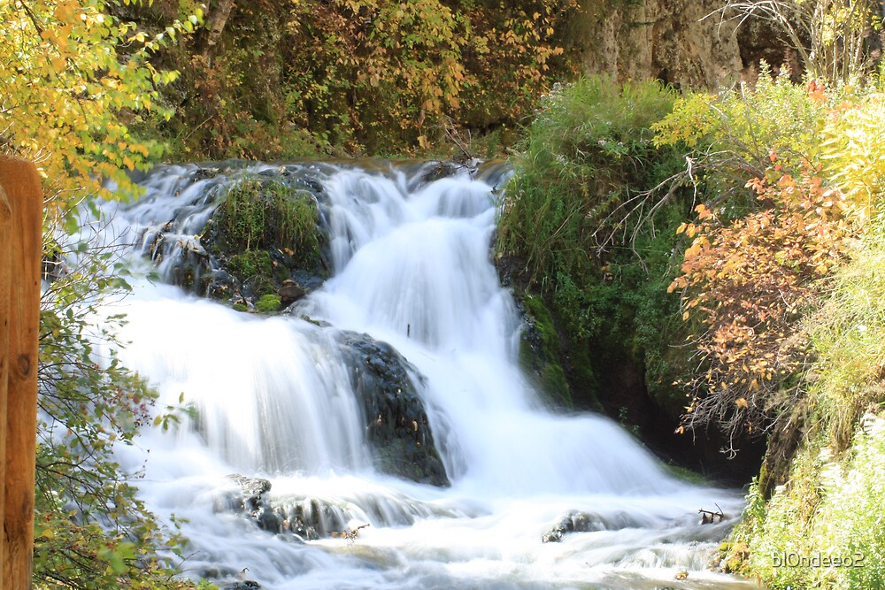 Spearfish Canyon by bl0ndeeo2