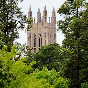 Top Of Duke Chapel by Cynthia48