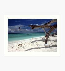 Dead Wood Beach Art Print