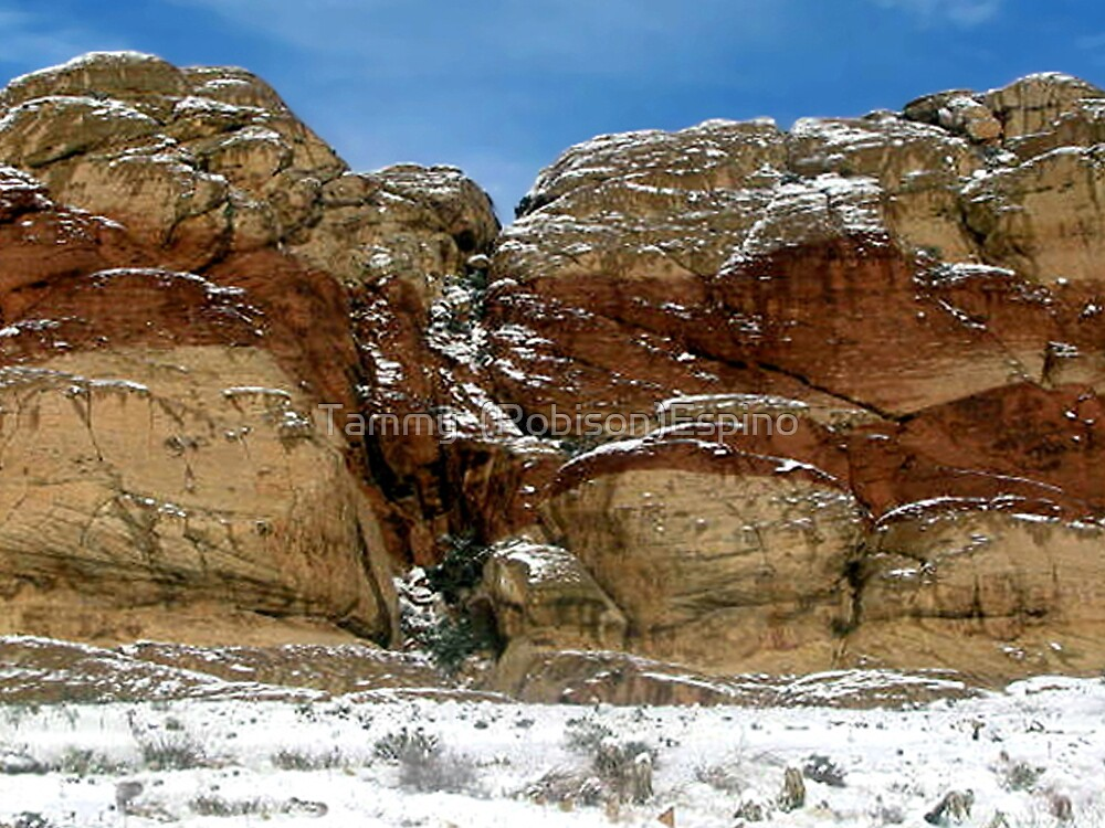 Red Rock Winter by Tammy  (Robison)Espino