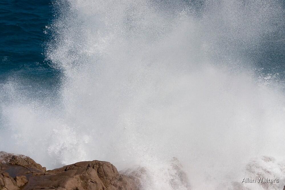 Sea Spray by Allan Walters