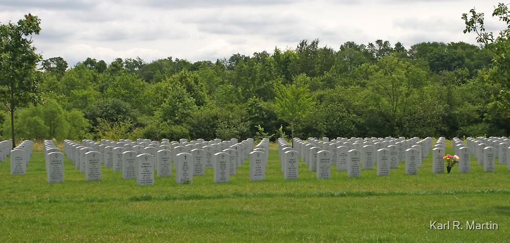 Military Cemetery by Karl R. Martin