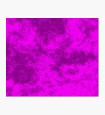 Fuchsia on Purple 50 100 DF  Photographic Print