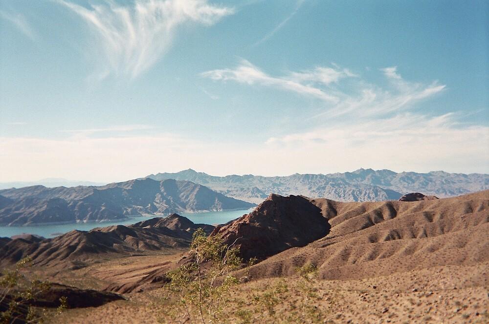 Nevada by cathygl32