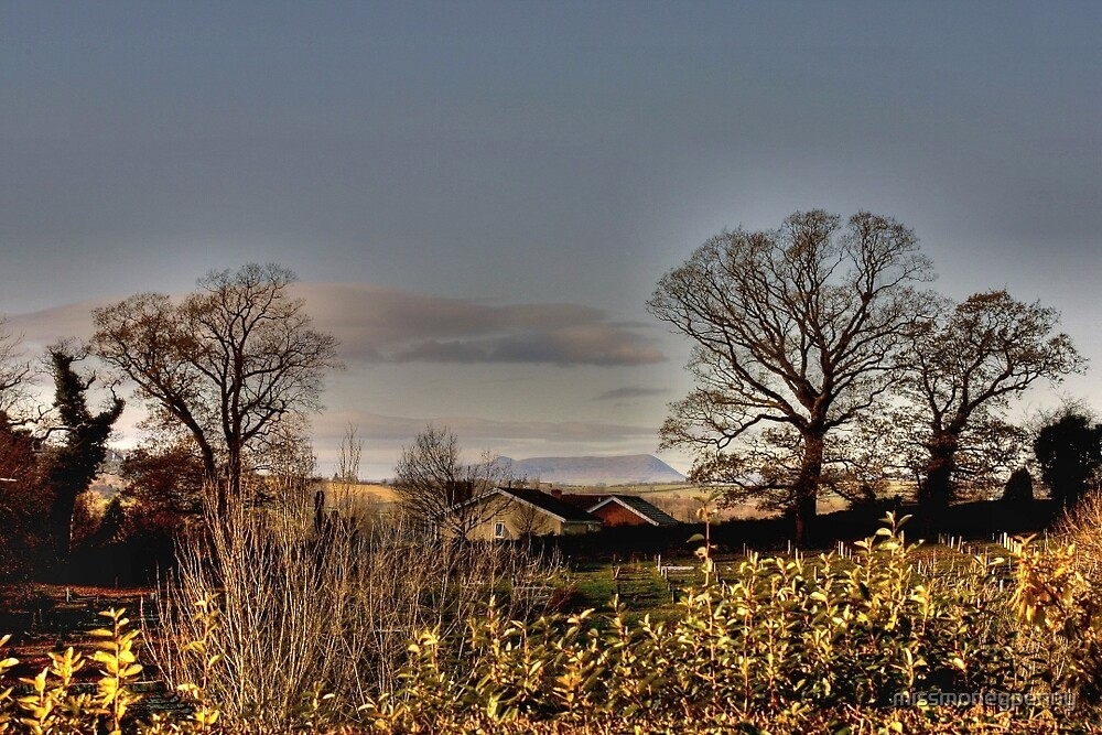Skirrid view from Monmouth by missmoneypenny