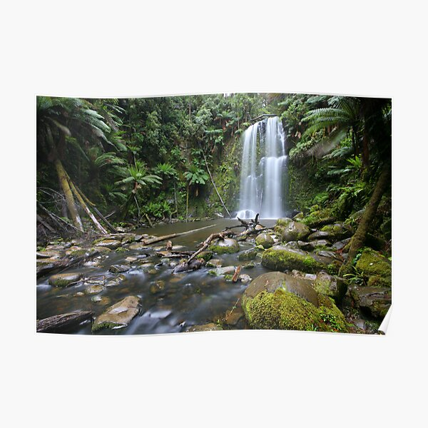Beachamp Falls, Otways National Park, Australia Poster