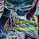 Art is a Controlled Environment by Cherie Hanson