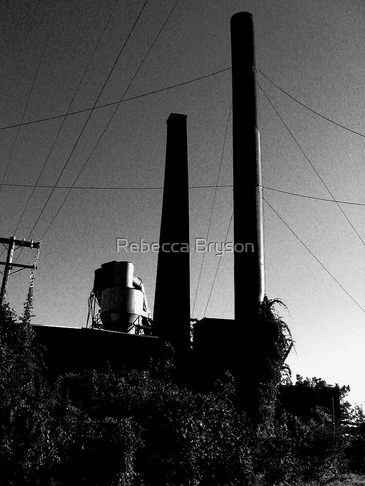 S Bent Brothers Monochrome Series 7 of 9 by Rebecca Bryson