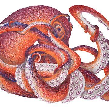 Maroon Octopus by SchwaigerStudio