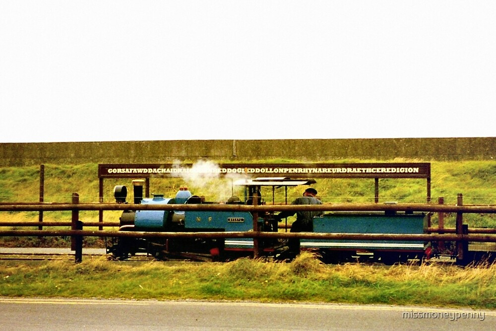 The Fairbourne and Barmouth Railway by missmoneypenny