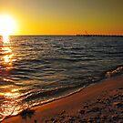 Sunset over Peace River, FL by LudaNayvelt