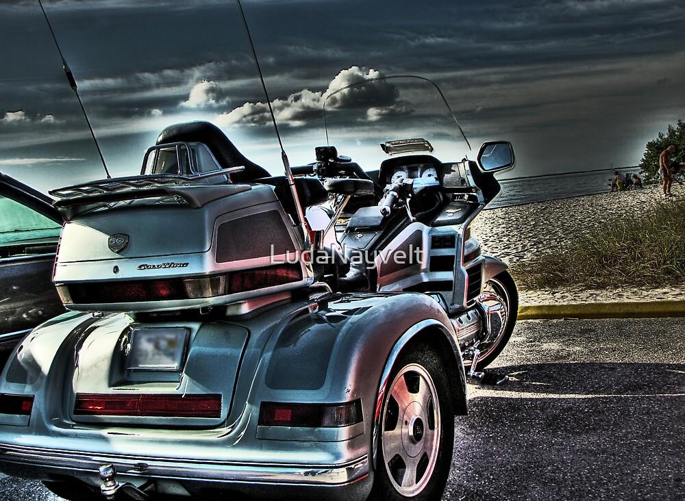 Take a ride by LudaNayvelt