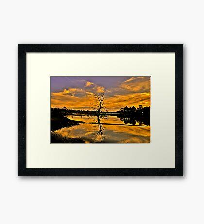 Wetland Dreaming - Wonga Wetlands, Albury NSW - The HDR Experience Framed Print