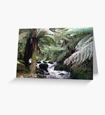 Tranquility - tree ferns and a stream Greeting Card