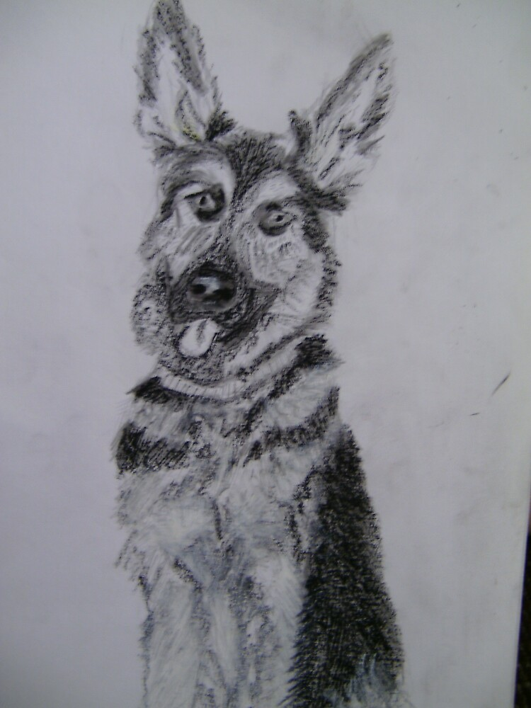 German  Shepherd sitting by kdesignz