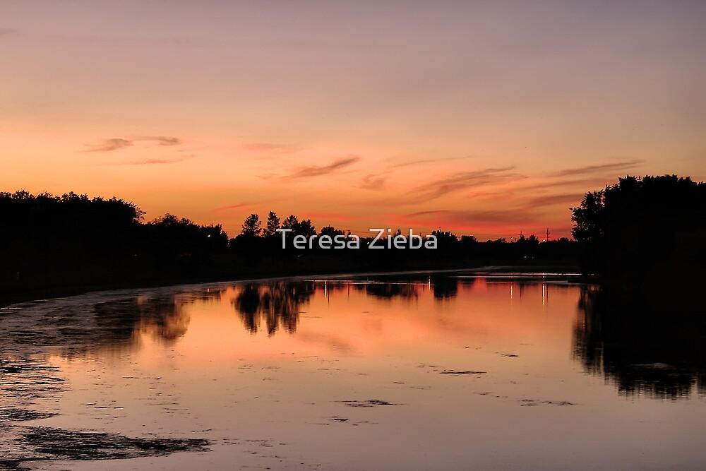 Sunset by Teresa Zieba