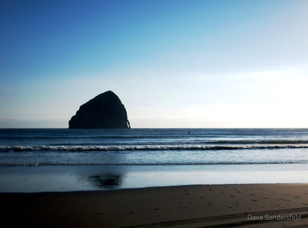 Gorilla Head near Pacific City, OR by Dave Sandersfeld