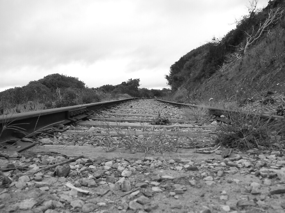 train track by Rebekah  Girolamo