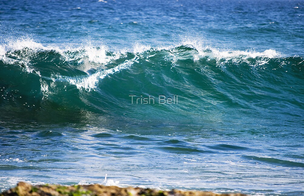 Waving the Wave by Trish Bell