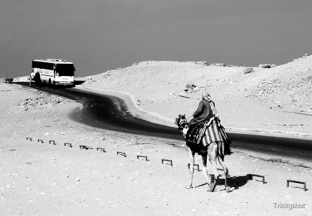 Egyptian Traffic by Trickyshot