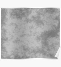 Grey on Silver 50 100 DP  Poster