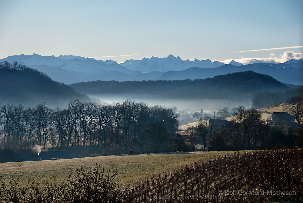 Pyrenees Winter Morning by Alison Cornford-Matheson