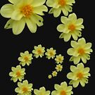 Yellow Flower 1 by Yvonne Carsley