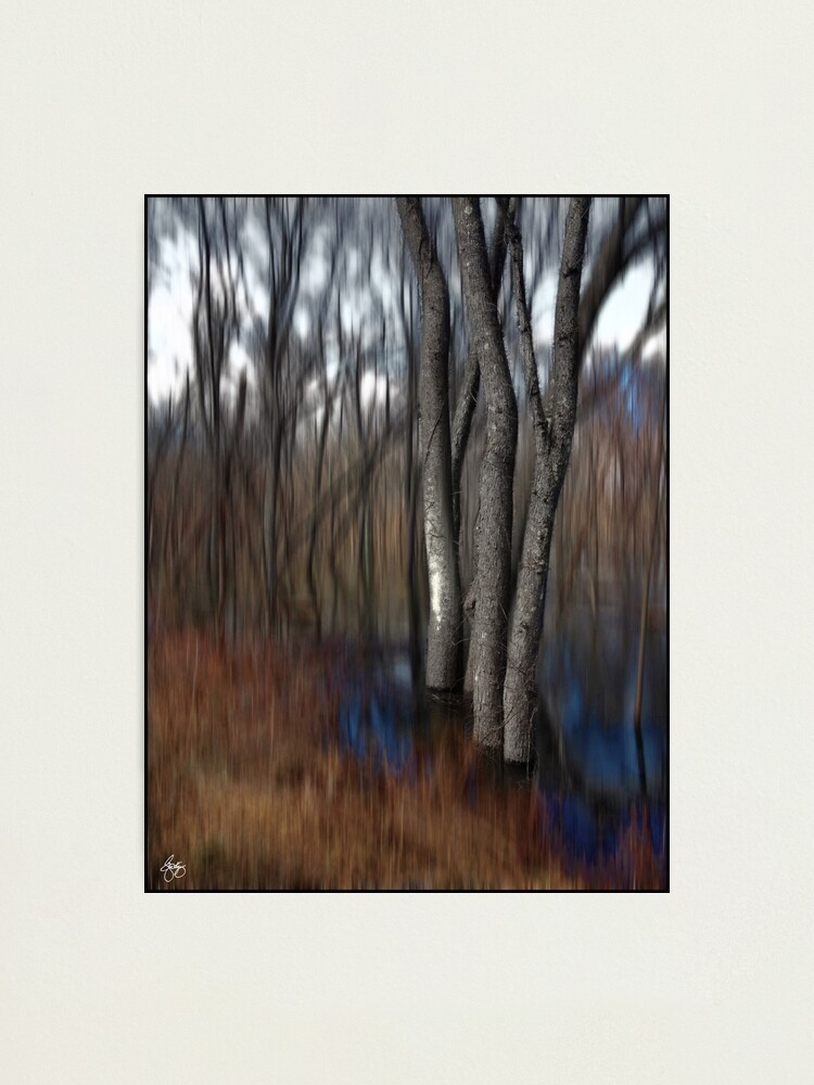 Alternate view of Spring Colors in a Floodplain Forest Photographic Print