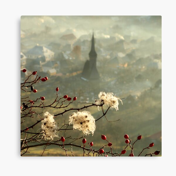 detail of a foggy morning... Canvas Print