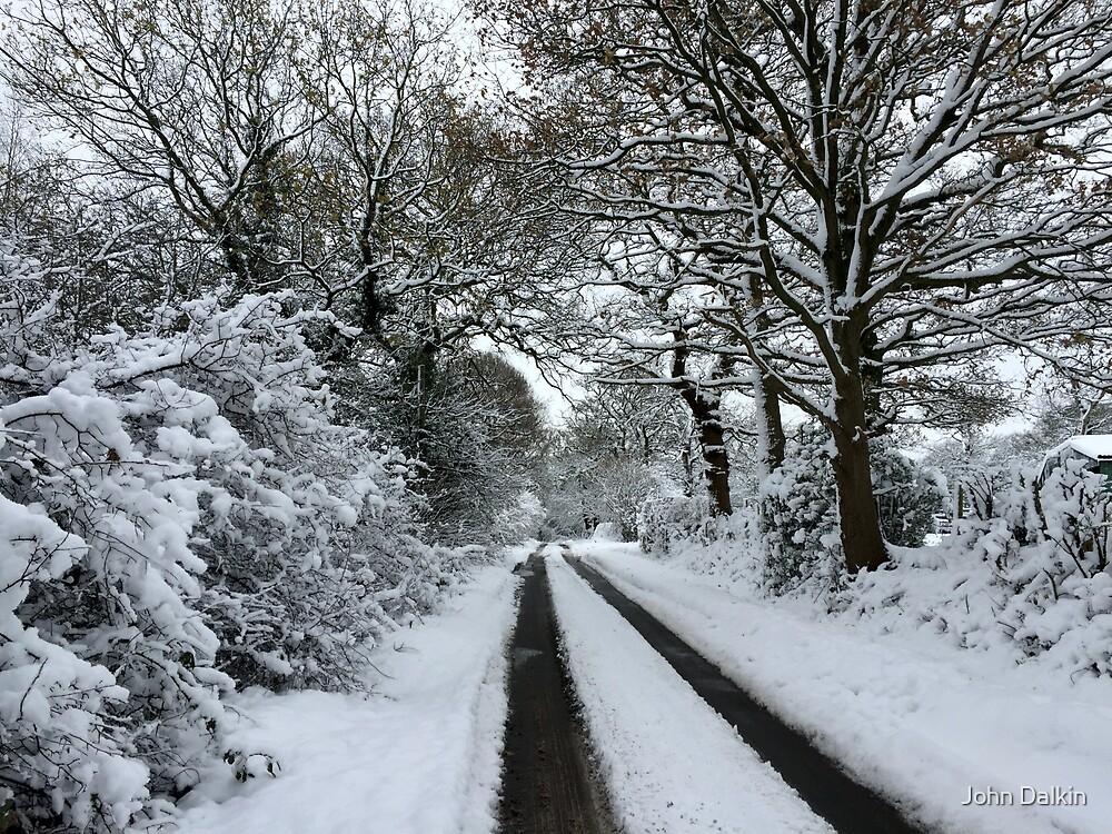 Tracks in the snow by John Dalkin