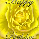 Birthday Flower in Yellow and Pink  by martinspixs