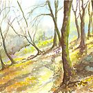 Misty Morning, Woodland Walk by Maureen Whittaker