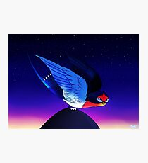 SN: Taking off - Taillow Photographic Print