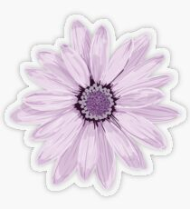 Lila Gänseblümchen Transparenter Sticker