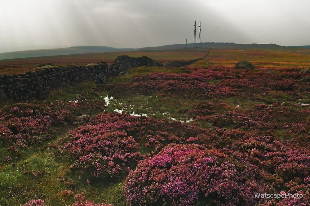 Rombald's Moor 2 by WatscapePhoto