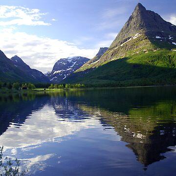 Innerdalshornet,  Renndoelsetra, Innerdalen, Norway by olem