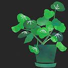 « Green Plant On Black Background » par Mireille  Marchand