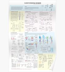 Guide to Drawing the Body Poster
